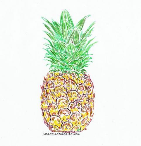2020 01 16 pineapple