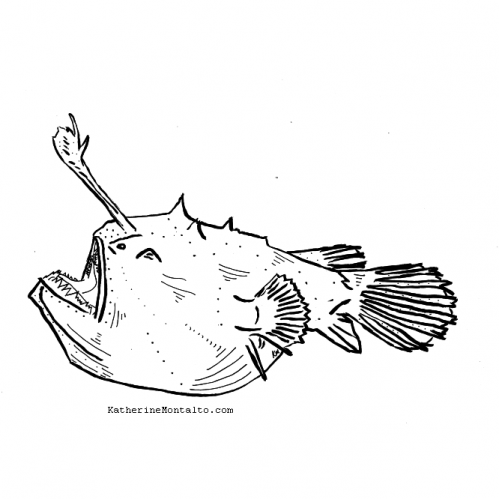 2020 08 24 Sea Creatures BW angler fish