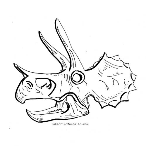 2020 10 12 dinoctober Triceratops skull