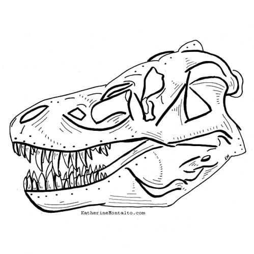 2020 10 15 dinoctober T Rex skull