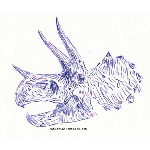 2020 10 19 dinoctober in color Triceratops skull