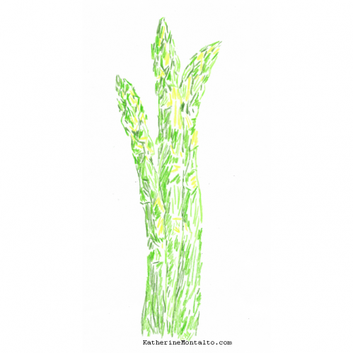 2021 05 vegetables in color asparagus